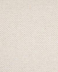 Greenhouse Fabrics B7781 MARBLE Fabric