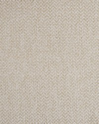 Greenhouse Fabrics B7786 BIRCH Fabric