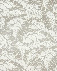 Greenhouse Fabrics B7798 MARBLE Fabric