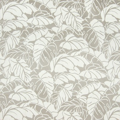 Greenhouse Fabrics B7798 MARBLE Search Results