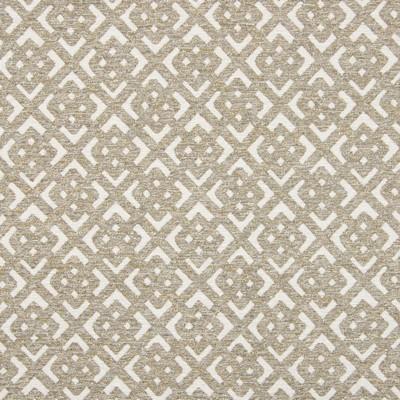 Greenhouse Fabrics B7817 MUSHROOM Search Results
