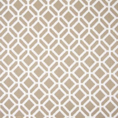 Greenhouse Fabrics B7824 RAWHIDE Search Results