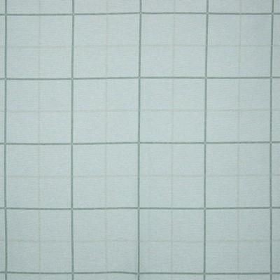 Greenhouse Fabrics B7864 SKY Search Results