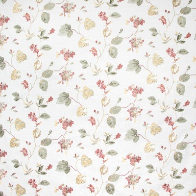 Greenhouse Fabrics B8242 GARDEN Search Results