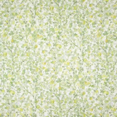 Greenhouse Fabrics B8303 PISTACHIO Search Results