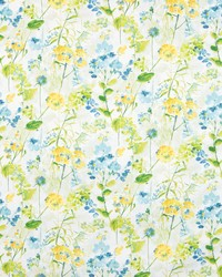 Greenhouse Fabrics B8305 GRASSHOPPER Fabric