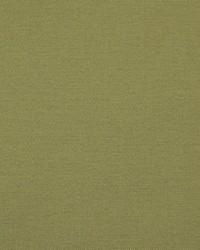 Greenhouse Fabrics B8461 ENVY Fabric