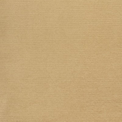 Greenhouse Fabrics B8524 SAND Search Results