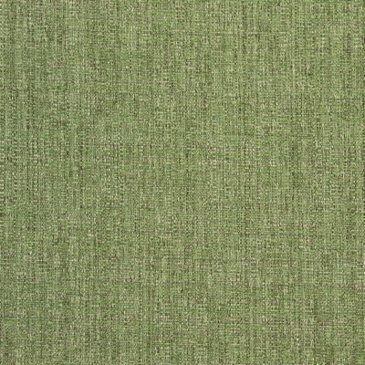 Greenhouse Fabrics B8648 LICHEN Search Results
