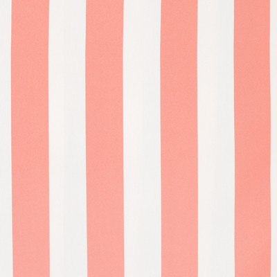 Greenhouse Fabrics B8809 CORAL Search Results
