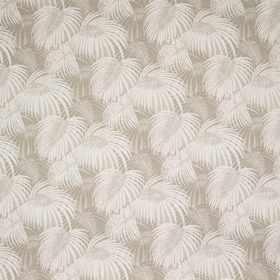 Greenhouse Fabrics B8848 OATMEAL Search Results