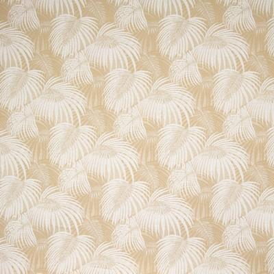Greenhouse Fabrics B8853 SHORTBREAD Search Results