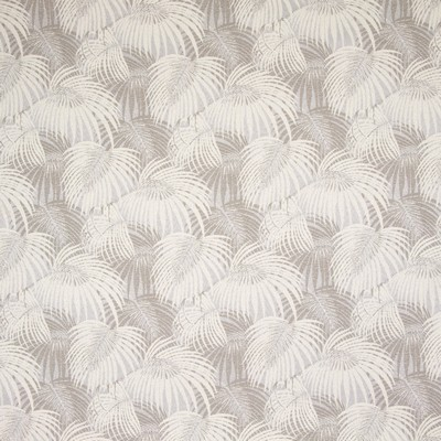 Greenhouse Fabrics B8860 EGGNOG Search Results