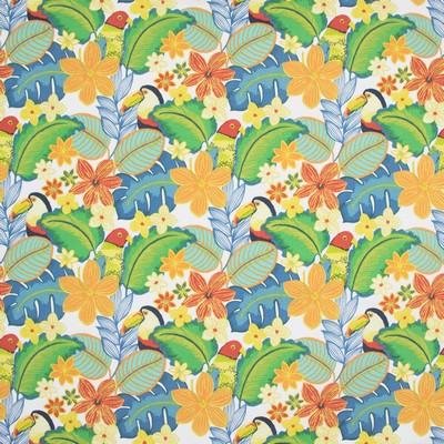 Greenhouse Fabrics B8872 TROPICAL Search Results