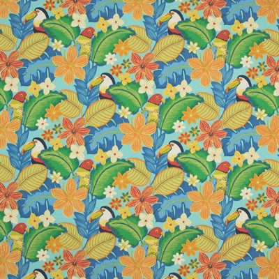Greenhouse Fabrics B8876 PACIFIC Search Results