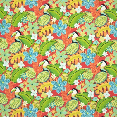 Greenhouse Fabrics B8899 FIESTA Search Results