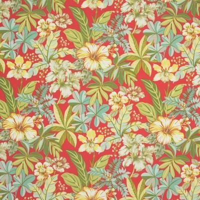 Greenhouse Fabrics B8902 BLAZE Search Results