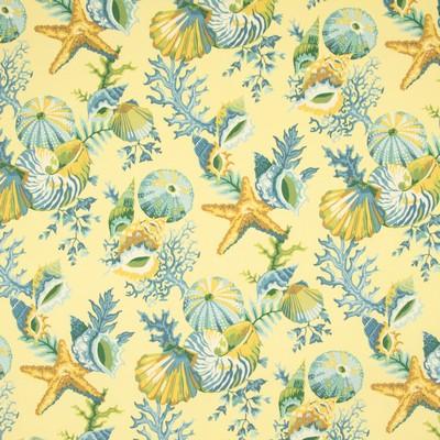 Greenhouse Fabrics B8909 BUTTERCREAM Search Results