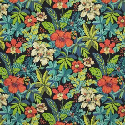 Greenhouse Fabrics B8922 RAINFOREST Search Results