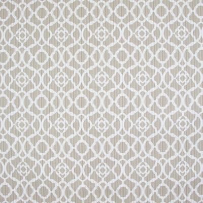 Greenhouse Fabrics B9435 RAFFIA Search Results