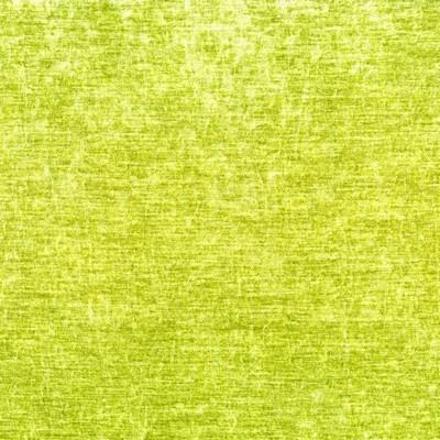 Greenhouse Fabrics B9508 PEAR Search Results
