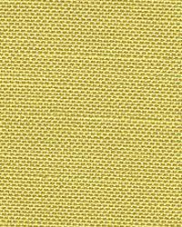 Magnolia Fabrics Bronson 100 Lemon Fabric