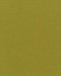 Kanvastex 244 Acid Green by