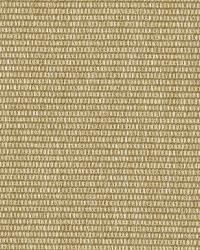 Ralph Lauren Bambusa Weave Twine Fabric