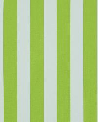 Covington Wave Runner 282 Lime Fabric