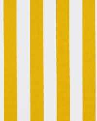 Covington Wave Runner 885 Sunshine Fabric
