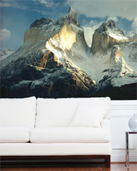 National Geographic Murals Brewster Wallpaper