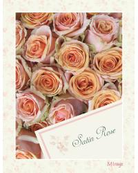 Satin Rose Mirage Wallpaper