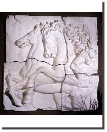 Roman Horses by