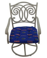 Florida Gators D Cushion 20 in  x 20 in  by