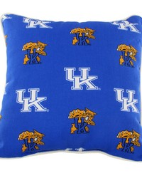 Kentucky Wildcats Outdoor Decorative Pillow 16 in  x 16 in  by