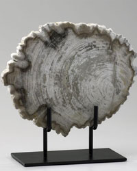 Small Petrified Wood on Stand 02598 by