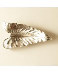 Anthurium Leaf by