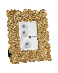 Large Gold Rush Frame by