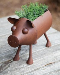 Iron Rusty Pig Planter by