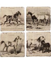 Painted Horse Coaster Set 4 by