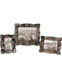 Raw Horn  Photo Frames  Set of 3 by