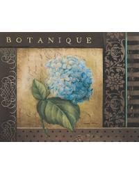 Botanique I by