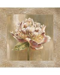 Pivoines I by