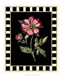 58954Z Besler Pink Peony II by