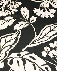 Black and White Flower Fabric