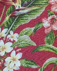 Big Kahuna Pali Cherry Fabric