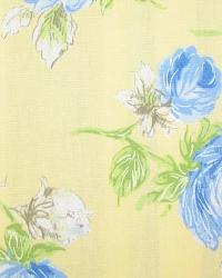 Porterdale Cornflower by  In Stock