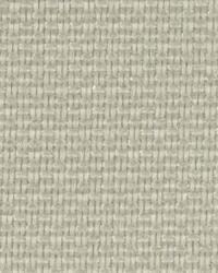Green Burlap Fabric  Cadiz Burlap Papyrus