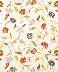 Exotic Inspirations Collier Campbell Fabrics