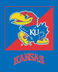 Fleece Fabric Panels  Kansas Jayhawks Fleece Panel